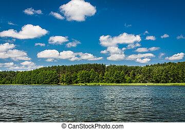 夏, 湖, 光景