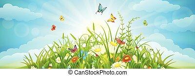 夏, 牧草地, 背景, 春