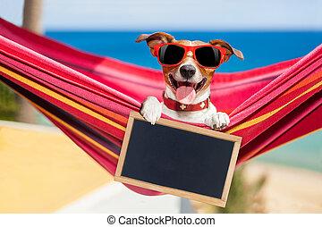 夏, 犬, ハンモック