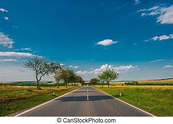 夏, 田舎, 道