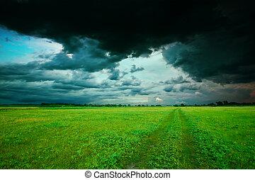 夏, 緑のフィールド