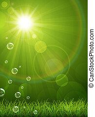 夏, 緑の背景