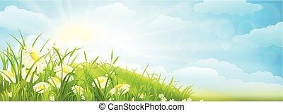 夏, 背景, 牧草地