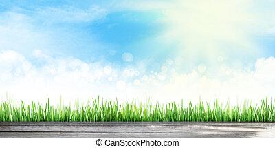 夏, 背景, 草, 広く, フィールド, 空, 抽象的