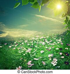 夏, 自然, 牧草地, 美しさ, 抽象的, backgrounds., 花