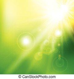 夏, 色, 春, 抽象的, 日光, バックグラウンド。, ベクトル, 緑, 火炎信号