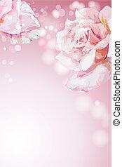 夏, 花, rose., tem, 招待