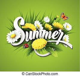 夏, 草, たんぽぽ, 背景, 新たに, ヒナギク