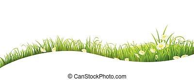 夏, 草, 旗, 緑