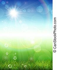 夏, 草, 緑の背景