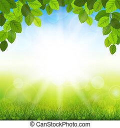 夏, 葉, 緑の背景