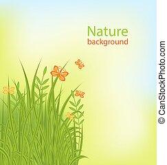 夏, 蝶, 草, 背景