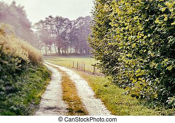 夏, 風景, ∥で∥, 田舎の道路