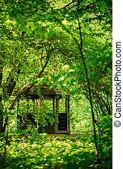 夏, gazebo, 公園, 庭, 森林