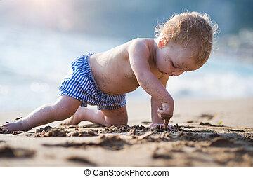 夏, playing., 休日, 小さい, 女の子, よちよち歩きの子, 浜