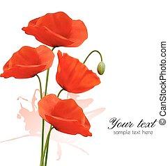 夏, poppies., 自然, 背景, vector., 赤