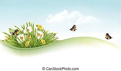 夏, vector., butterflies., 草, 背景, 花