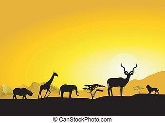 夕方, アフリカ