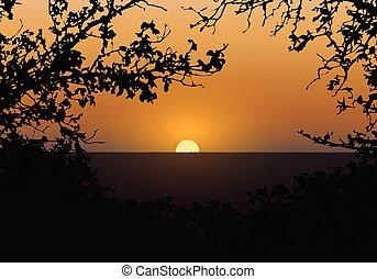 夕方, シルエット, sky., 木, イラスト, 現実的, 風景, ベクトル, 日没, 森林, オレンジ, ブランチ, 背景