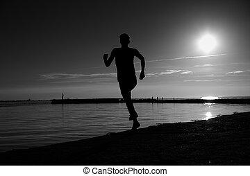 夕方, スポーツマン, 作成, 影で覆われる, 浜, 動き