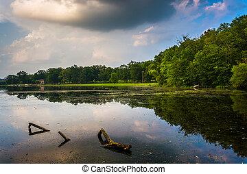 夕方, 反射, 中に, a, 沼が多い, 区域, の, 湖, pinchot, gifford, pinchot, 州立...