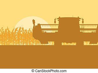 夕方, 収穫機, ライト, トウモロコシ, 朝, フィールド, ベクトル, ∥あるいは∥, 風景