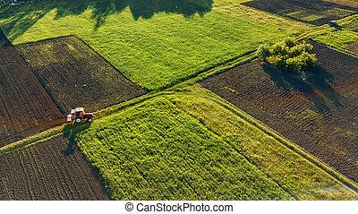 夕方, 航空写真, 目, 無人機, 春, それ, 鳥, によって, トラクター, フィールド, 農業, 日没, 道, 光景
