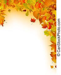 多彩, 葉, 上に, a, 白, バックグラウンド。, eps, 8