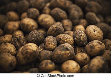 多数, 塊茎, harvest., 熟した, 店, potatoes., 食料雑貨, 豊富