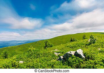 多草, 小山, 在中, runa, 山