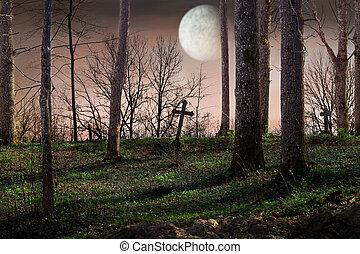 夜晚, 由于, a, 滿月