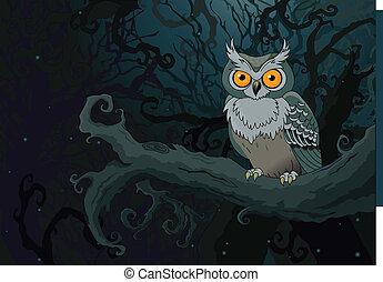 夜, フクロウ