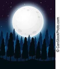 夜, フルである, 森林, 月