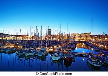 夜, 光景, の, 左舷vell, 中に, バルセロナ, -, スペイン