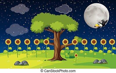 夜, 光景, 庭, 抽象的