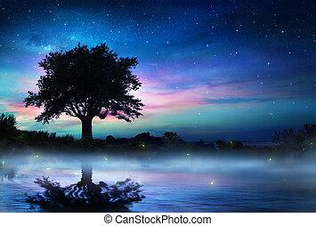 夜, 木, 星が多い, 孤独