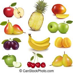 大きい, 別, グループ, fruit., vector.