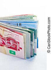 大きい, 折り目, カナダ, お金