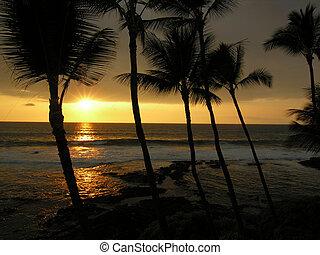 大きい, 日没, 島