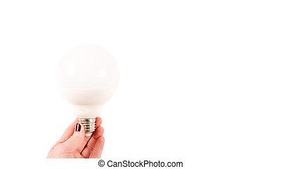 大きい, 背景, 白, 手, 光沢がない, 女性, 保有物, 電球, ライト