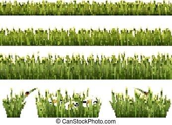 大きい, grass., 緑, vector., コレクション