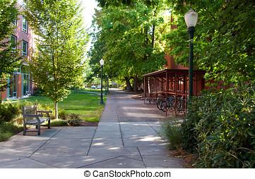 大学, オレゴン