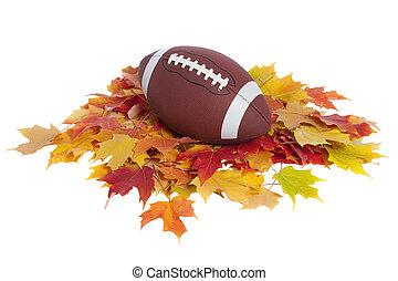大学, フットボール, ∥で∥, 秋休暇, 隔離された, 白