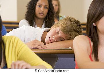 大学, 大学, 睡眠, によって, 学生, 講義, マレ