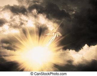 天使, 暗やみに, 空