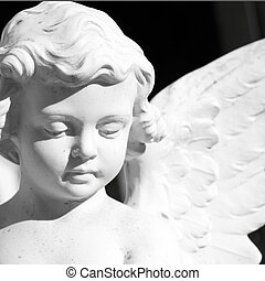 天使, 脸