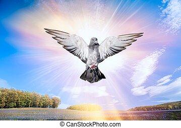天使, 鳥, 天国