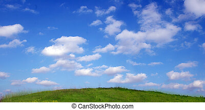 天空, 同时,, 草