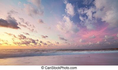 天空, 背景, 上, sunset.