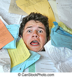 太多, 家庭作业, 任务